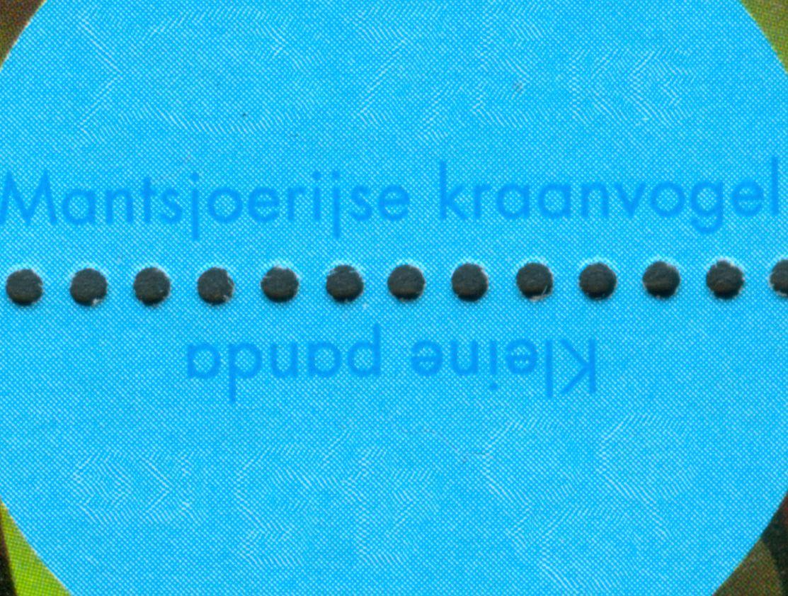 nl_2006_blijdorp_mkv_01.jpg